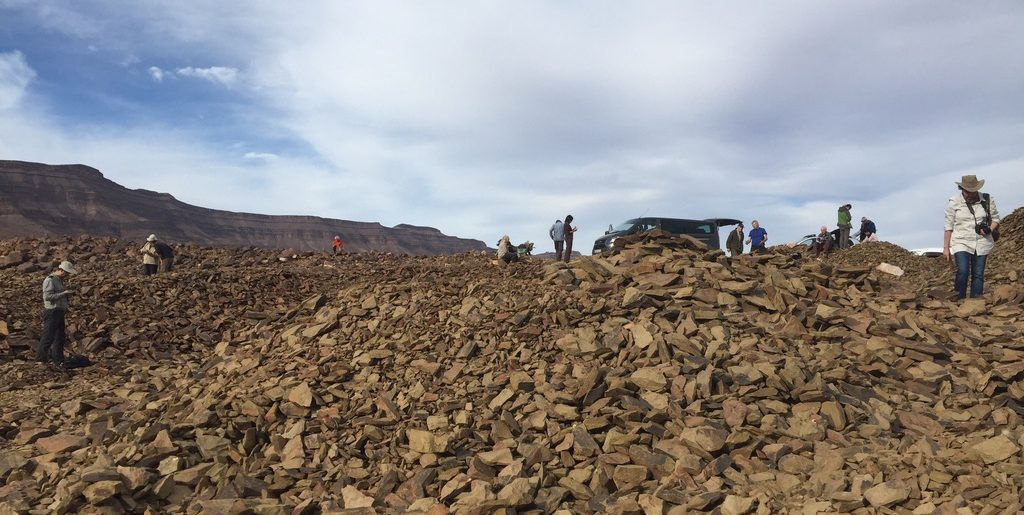 IGCP 653 Field excursion and workshop on the Fezouata Formation